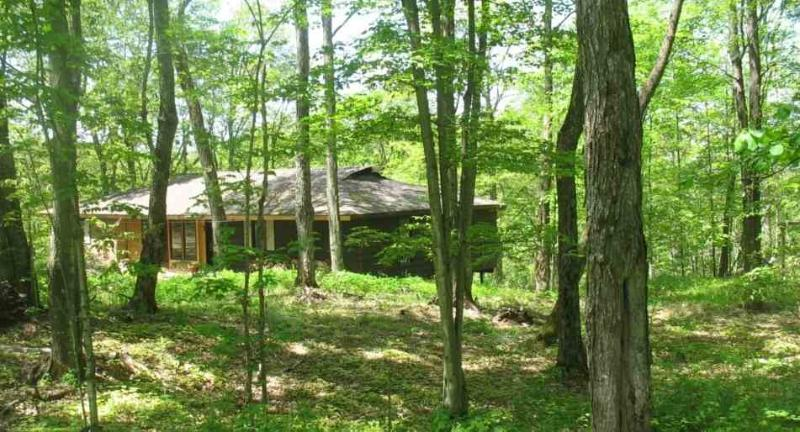 Maple Arbour -  living lightly on the earth - Image 1 - Haliburton - rentals