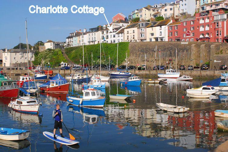 Outside Brixham Harbour - Charlotte Cottage - Brixham - rentals
