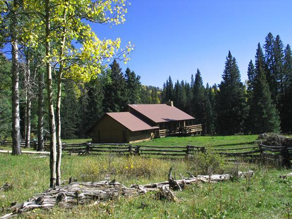 Home sits in meadow surrounded by National Forest - Secluded Mountain Meadow Home, Vallecito, Durango - Bayfield - rentals