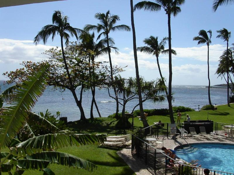 Kanai grounds,pool and ocean - Special Hurry  few weeks still avail Sept-Dec - Maalaea - rentals