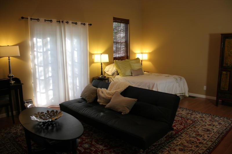 Comfortable, spacious studio space is definitely better than most hotel rooms and is a great value. - Studio Gem Perfect for Two, Just South of Downtown - Austin - rentals