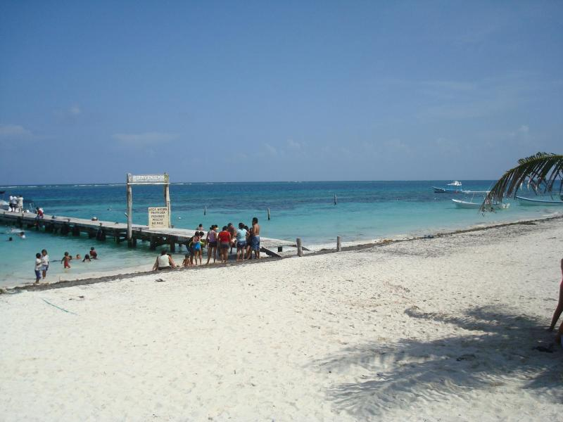 Beautiful beach in Puerto Morelos, enjoy snorkeling in the amazing coral reef - Charming Studio Puerto Morelos 3 Min walk to Beach - Puerto Morelos - rentals