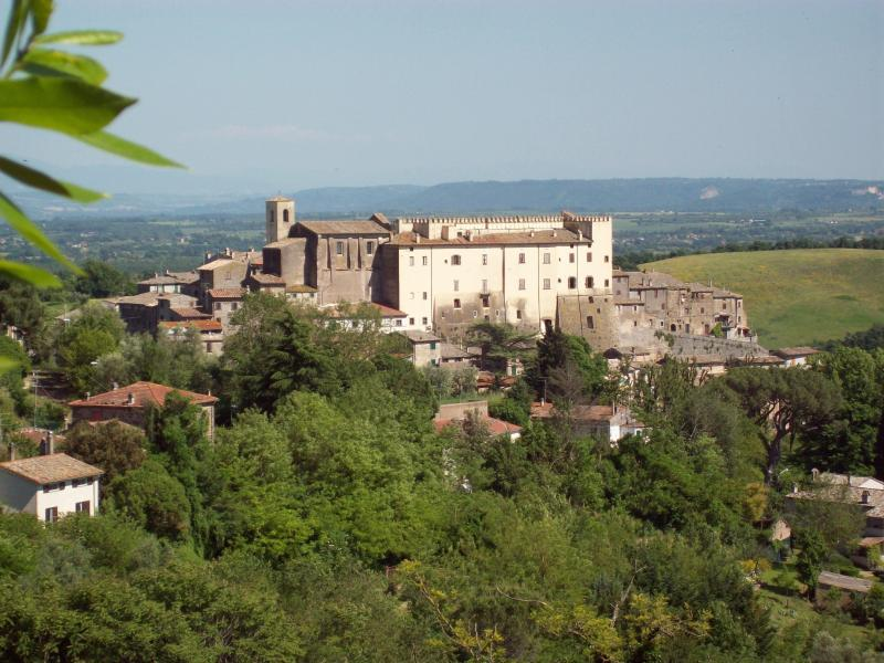 The village of Roccalvecce,the house sits below the right side of the white castle above the gardens. - Hilltop Village Home, 1 hr north of Rome - Viterbo - rentals