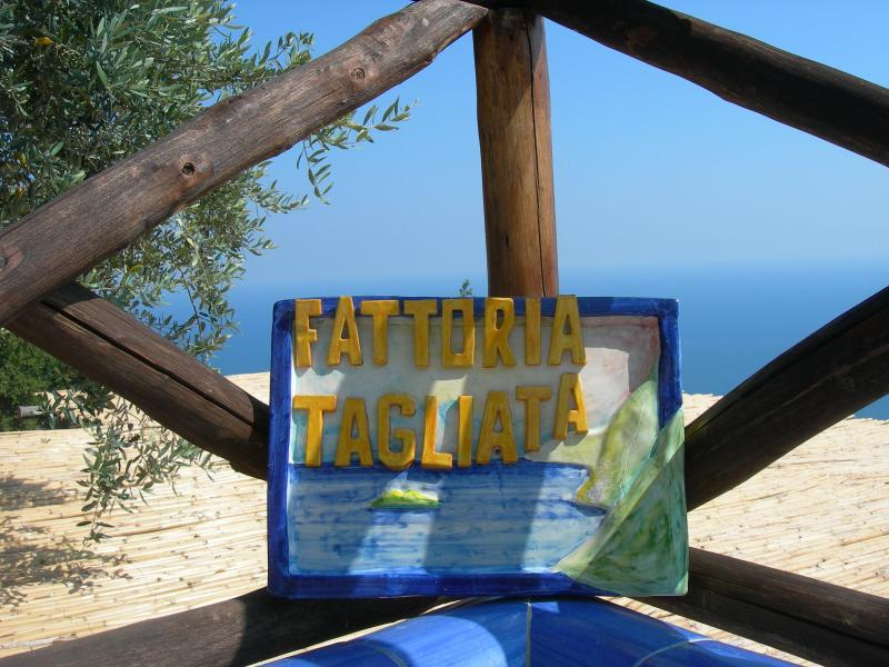 WELCOME TO LA TAGLIATA - AUGUST DEAL 2 DINNERS, BREAKFAST,PARKING - Positano - rentals