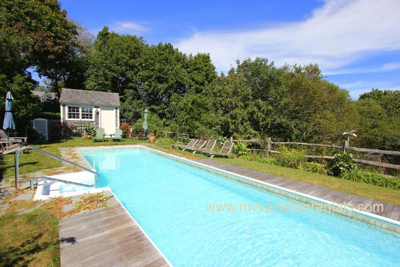 Lap Pool (shared by owner) & Patio Surround - DACEM - - West Tisbury - rentals