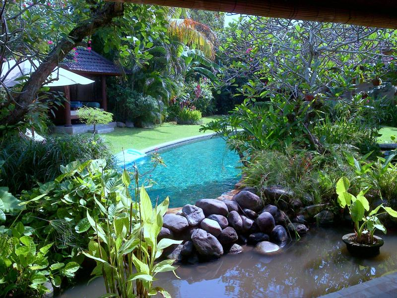 view from dinning - Villa Plawa Asri: You'll never stay anywhere else! - Seminyak - rentals