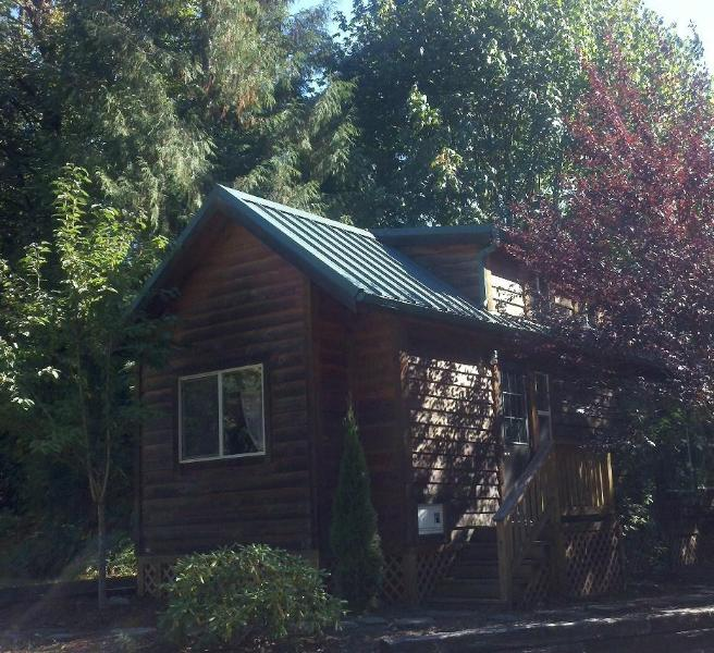 Nestled in trees - 1 bdrm Cozy Mt Hood Cabin Retreat- pool and spa - Welches - rentals