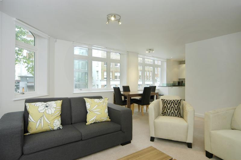 Lounge area - Fitzrovia, Nr Oxford Street, Large 2BR,  2 Bath - London - rentals