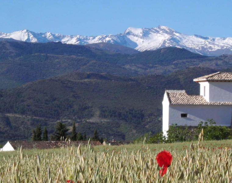 Snow on the 3000m high peaks of the Sierra Nevada into late spring - New village house for 6, with pool, 30 min Granada - Diezma - rentals