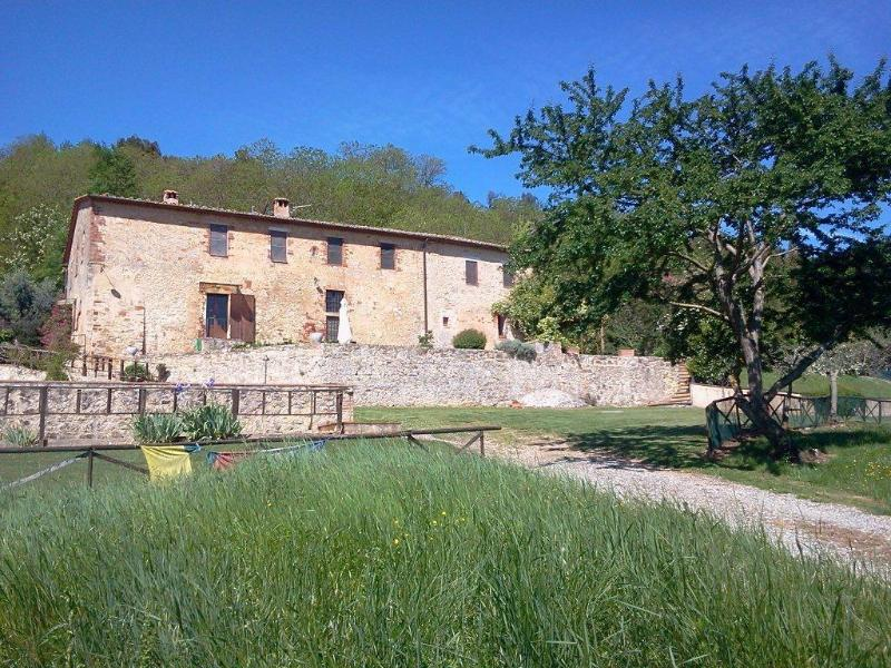 view of the country villa  - Alone on its hill at the doors of Siena - Sovicille - rentals