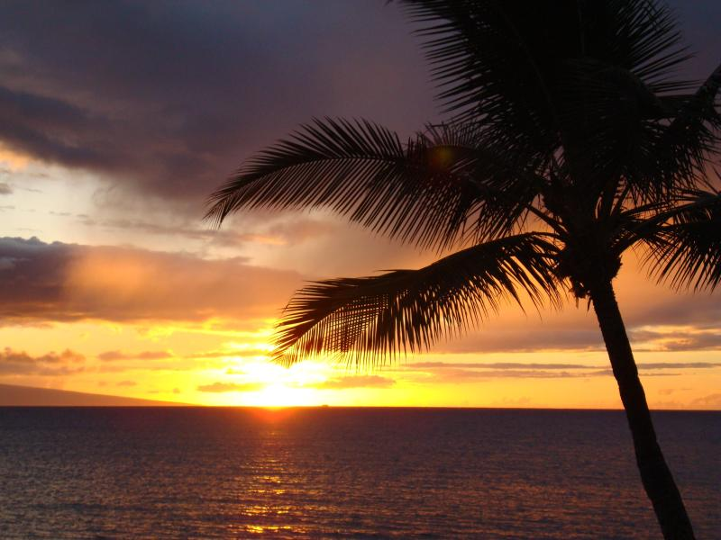 Another stunning West Maui Sunset - Oceanfront West Maui Condo - Kahana - rentals