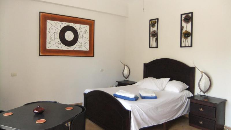 queen-size bed, cable tv, kitchen, a/c & ceiling fan - Deluxe Studio Bavaro Beach, Punta Cana - Punta Cana - rentals
