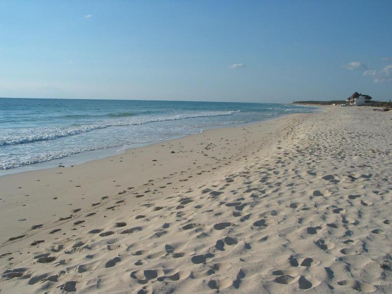 Playa del Secreto - Turtle Hideaway - Privacy, Beautiful Beach - Playa del Secreto - rentals