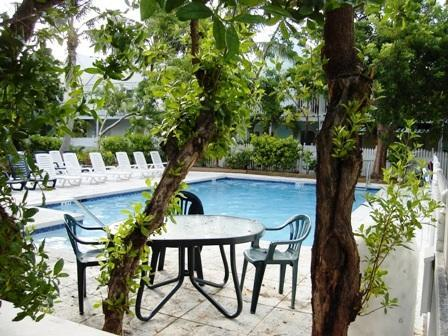 Beautiful tranquil heated pool steps from your door. - Artist Cottage in Truman Annex - Key West - rentals