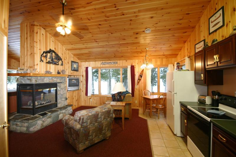 Lakeside cabin living room - Gunflint Lodge - Grand Marais - rentals