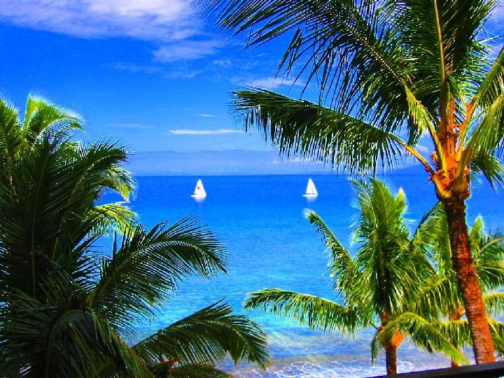 View from Lanai - Spectacular Direct Ocean Front 2Bdrm/2Bth Crnr Ste - Kaanapali - rentals