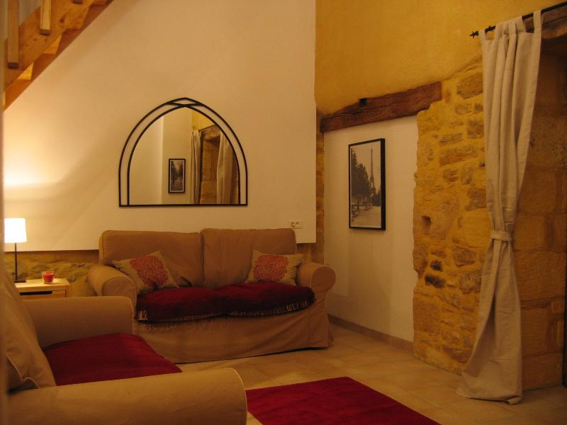 lounge - Sarlat La Petite Grange barn conversion pool views - Sarlat-La-Caneda - rentals