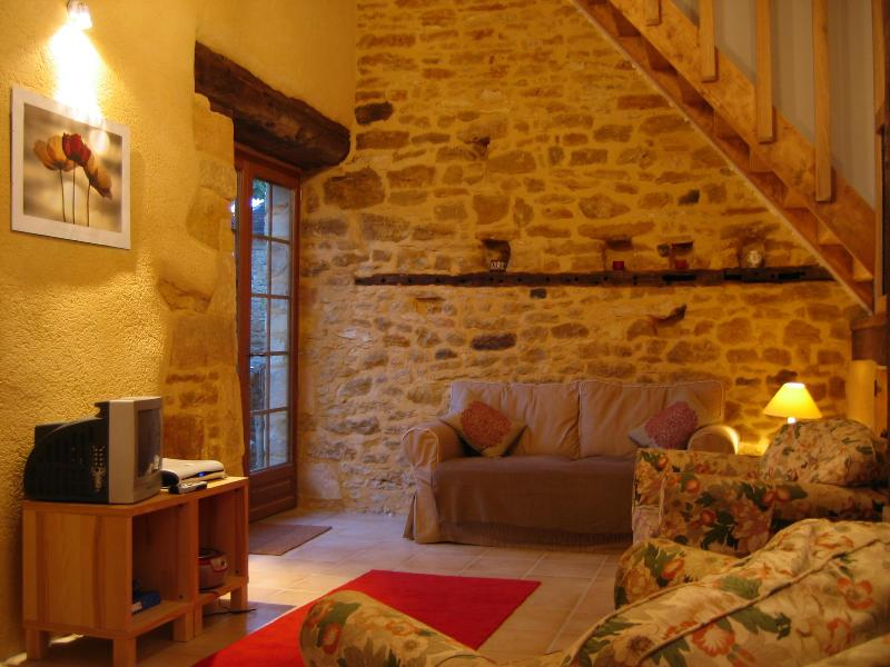 La Grange - Sarlat, La Grange, barn conversion, pool, views - Sarlat-La-Caneda - rentals