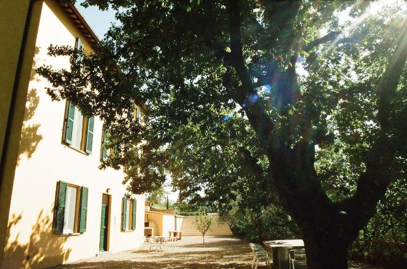 The Yellow House and oak tree - The Yellow House - Civitella d'Agliano - rentals
