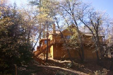 Moose Haus - Image 1 - Big Bear Area - rentals