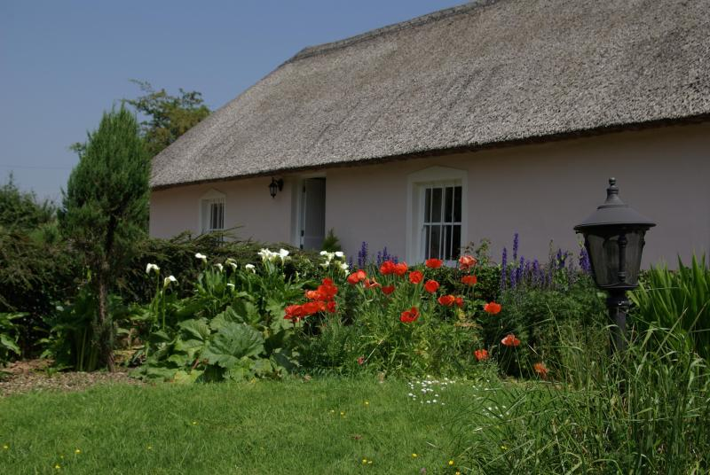 Jack's Cottage - Wonderful Thatched Cottage (5 to 15% discounts) - Dungarvan - rentals