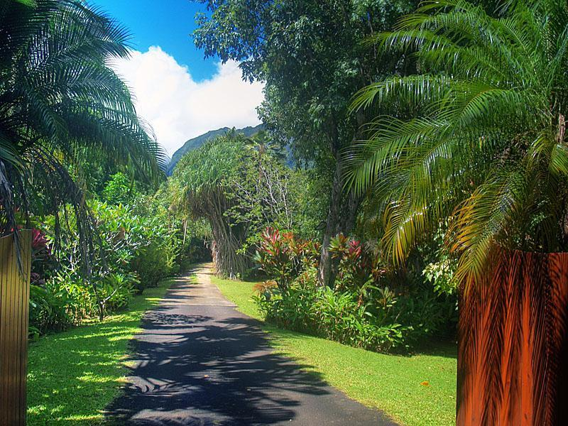 The entry of River Estate leads you to your own private paradise of peace, quiet and romance. - Selected 1of12 Romantic Properties: Lonely Planet - Hanalei - rentals