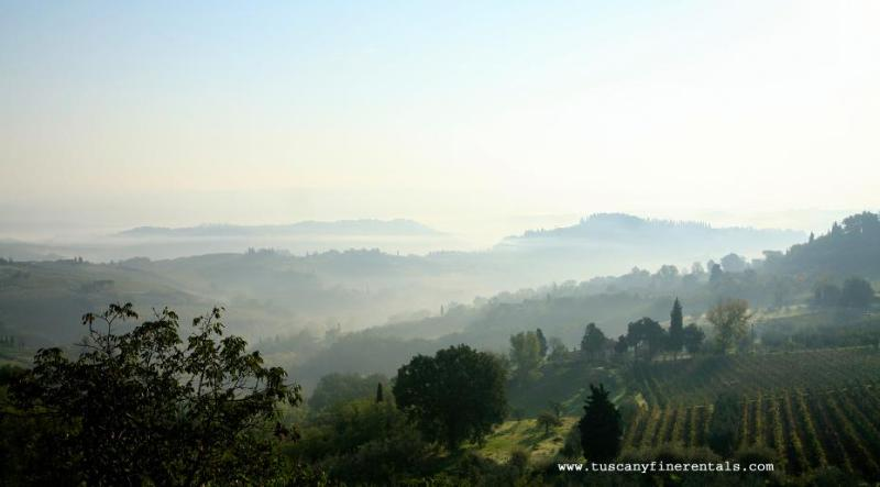 Tuscany Views - Tuscany Apartment Olive farm  Tuscany Fine Rentals - Lucca - rentals