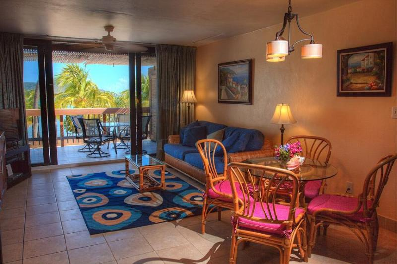 View of Paradise (Fully Renovated Condo) - Image 1 - East End - rentals