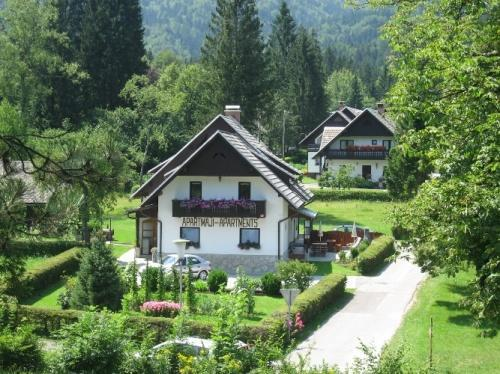 Alp Apartments - Bohinj Lake - ALP Apartments - Bohinjsko Jezero - rentals