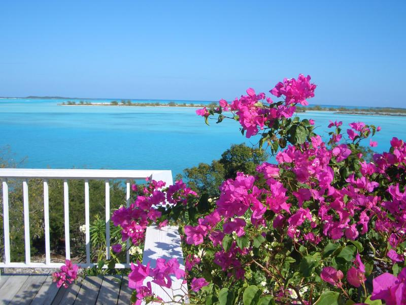 Moriah Harbor Cay From Main House - Escape to  oasis of peace, quiet, exquisite beauty - Great Exuma - rentals
