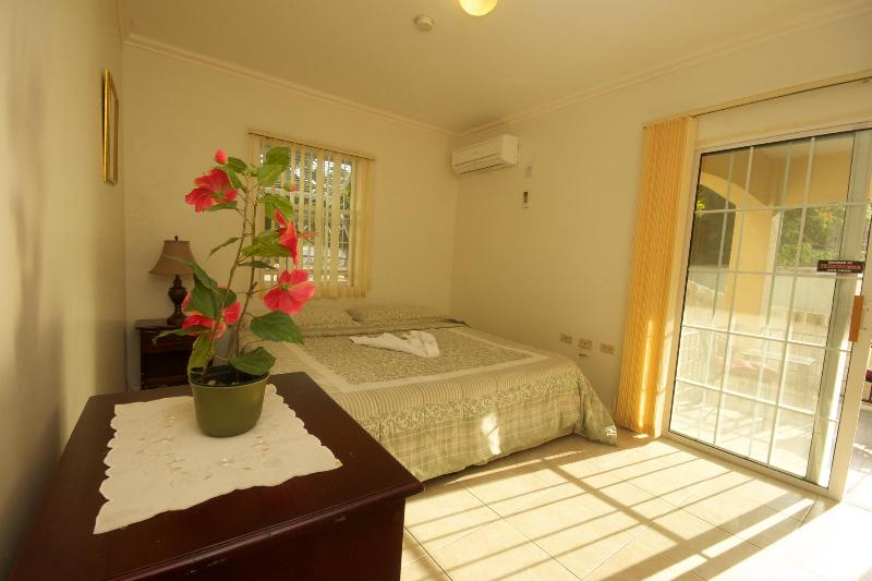King sized air conditioned bedroom - Kingston Jamaica modern city 2 bed apt, HDTV WIFI - Kingston - rentals