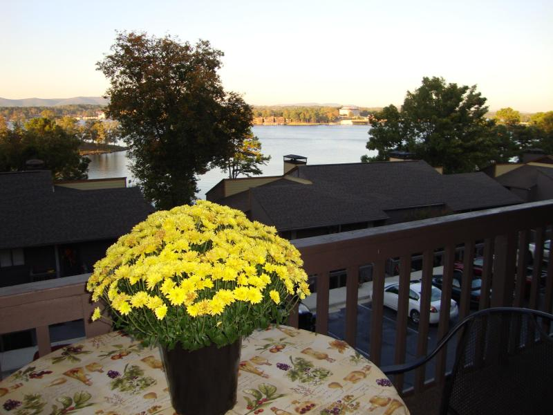 Beautiful view of lake from balcony - South Shore  U1 - Hot Springs - rentals