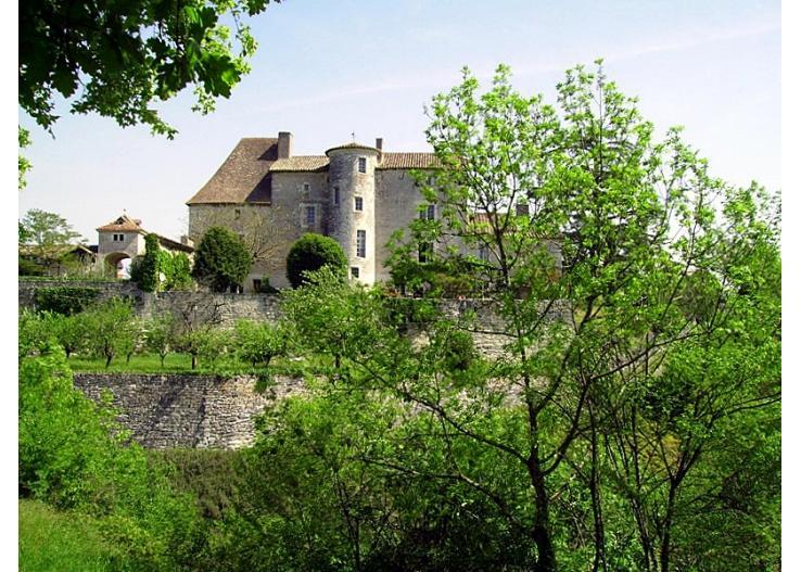 Chateau D'ax - Entire Estate - Image 1 - Bagat En Quercy - rentals