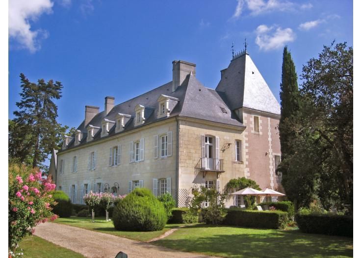 Chateau De Tille And Cottage - Image 1 - Huismes - rentals