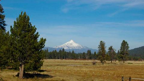 South Meadow 005 - Image 1 - Black Butte Ranch - rentals