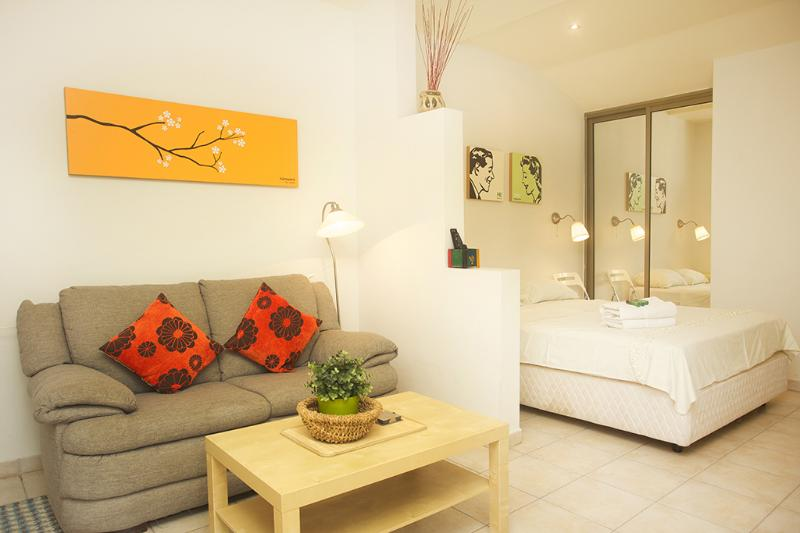 The Studio - A view from The entrance - Raanana Luxury Studio Apt with garden - REF04 - Ra'anana - rentals