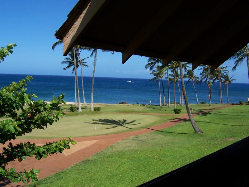 View from our Lanai with Whale Breaching - Awesome Ocean View 1 BR Condo West End Molokai, HI - Maunaloa - rentals