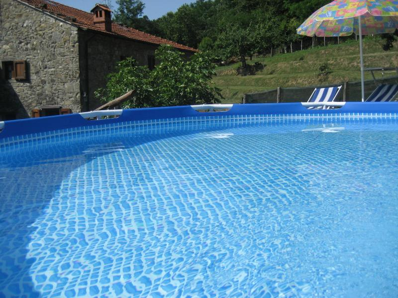 our small pool to cool off in the private garden - LUCCA/Lovely Borgo Vecchio/Stunning View/WiFi&Pool - Lucca - rentals