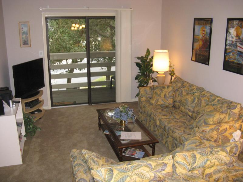 Living room with 40 inch HDTV! - The crowds are gone! New Kitchen!  2BD, Wi-fi! - Hilton Head - rentals
