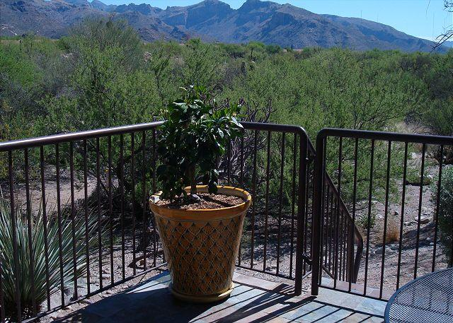 First Floor Condo with Mountain Views - Image 1 - Tucson - rentals