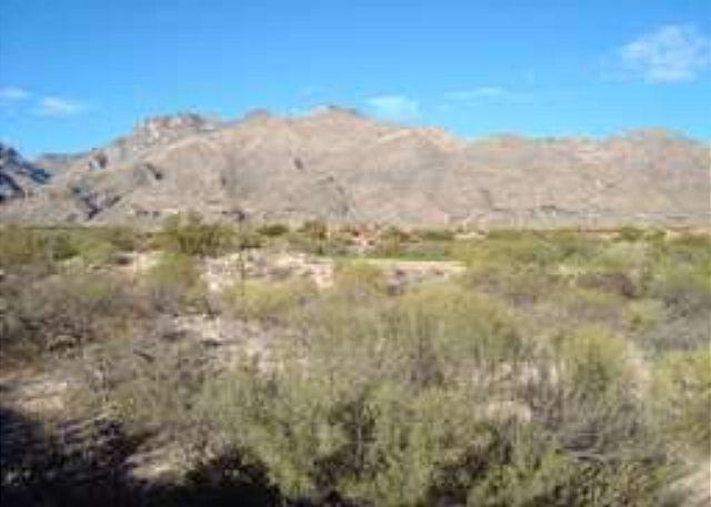 Patio View - Elegantly appointed, fully furnished condo with stunning mountain views1 - Tucson - rentals
