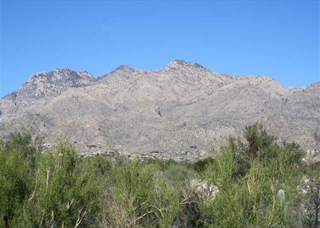 Patio View - 3 Bedroom with Stunning Mountain Views and Complete Upgrades - Tucson - rentals
