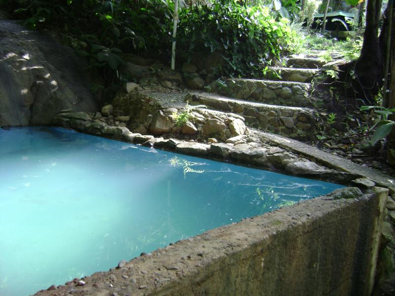 (Rated Excellent 2013) Nature swimming pool - El Yunque Hamilton Forest, Log Cabin  (Top Vacation Rental 2013 and Reviews Excellence Badge ) - Rio Grande - rentals