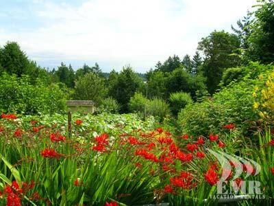 Property gardens - Tranquil and Stunning Victoria 4 Bedroom Lake View and Acreage Estate - Saanichton - rentals