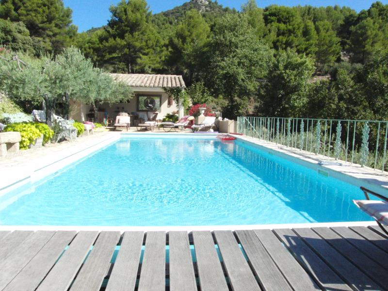 Swimming pool - Jolie Cottage - Saint-Hippolyte-le-Graveyron - rentals