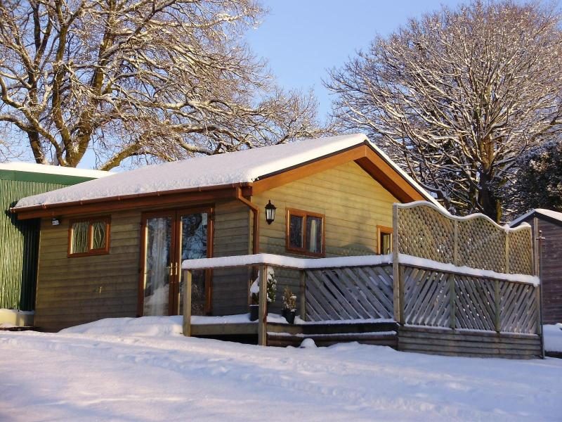 Swansea Log Cabin - 1 bedroom Log Cabin in Swansea Valley, Wales UK - Swansea - rentals