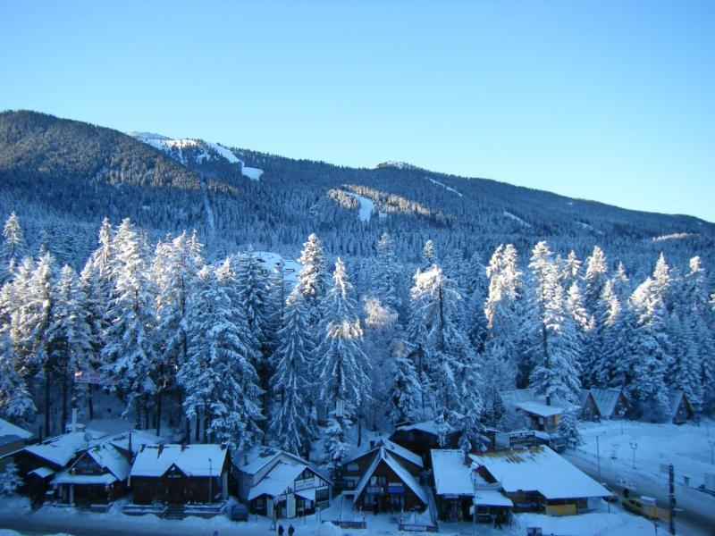 Luxury 5* Apartment with Spa Facilities - Image 1 - Borovets - rentals