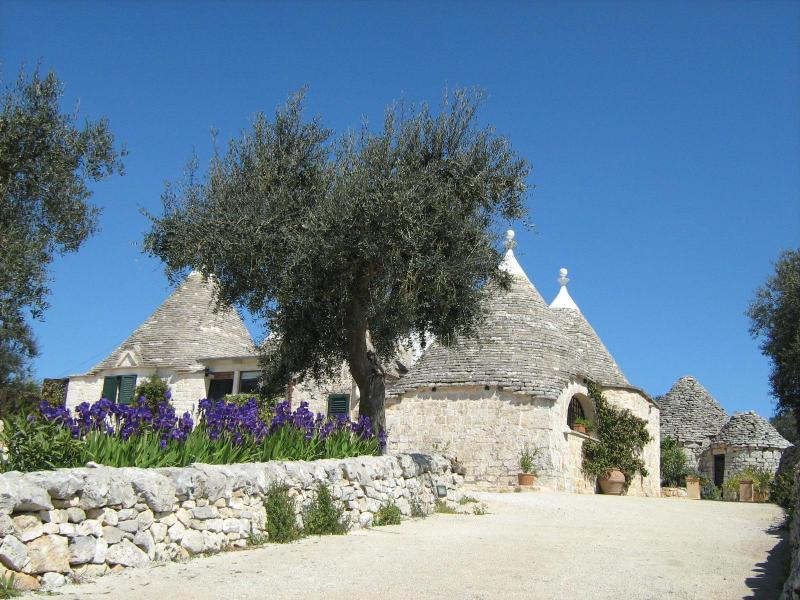 Trullo from main drive - Trullo Caterina perfect for 2 to relax and explore - Cisternino - rentals