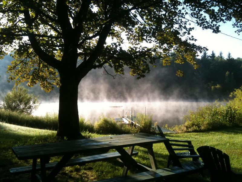 Early morning, mist on Constance Pond, blue heron fishing, breakfast anyone? - Bally Loch: Divine getaway, woods & meadow w/ pond - Findley Lake - rentals