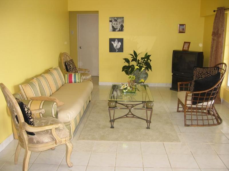 Living Room - Aruba Ocean Front Vacation House - Pos Chiquito - rentals